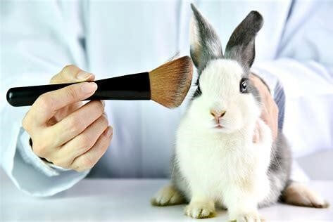 Breakthrough for France as China drops animal-testing for ordinary cosmetic products