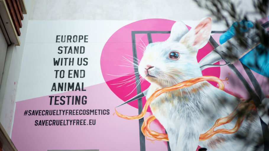 The Body Shop and Dove lead campaign to protect cosmetics animal testing ban